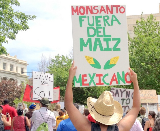 Monsanto_Featured